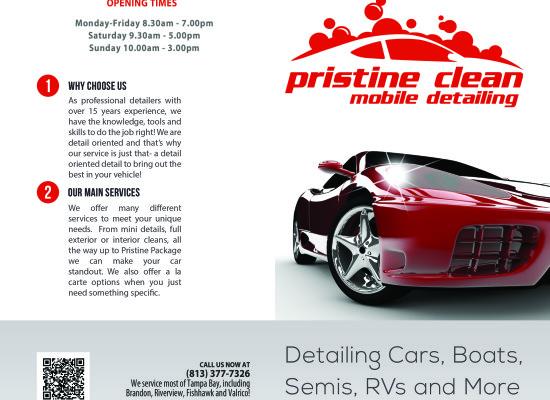 Pristine Clean Bi-fold Brochure